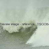 _DSC0364.jpg