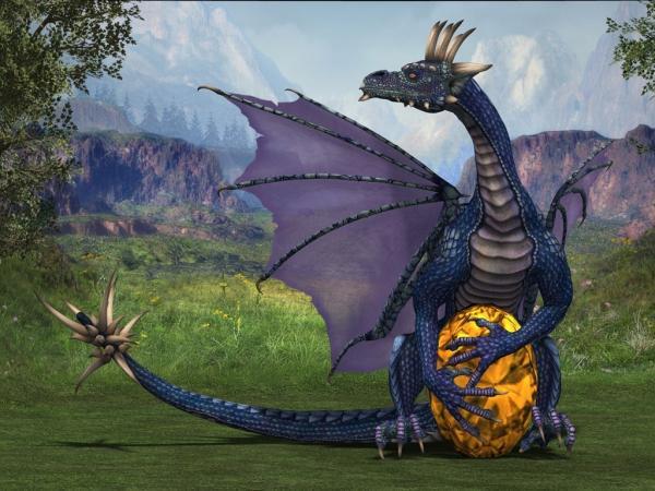 Drangon And An Egg, Dragons