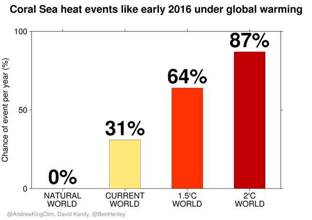 Annual chance of Coral Sea heat events like the one in early 2016, under global warming. Graphic: Andrew King / David Karoly / Ben Henley