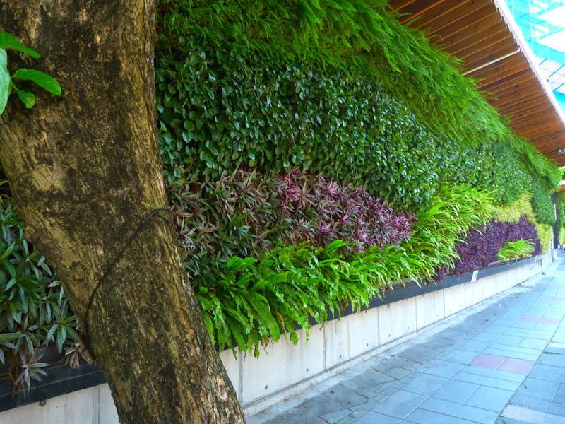 Taipei. Promenade de santé au départ de la station de métro DAHU       06/13 - P1330413.JPG