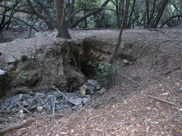 natural bridge made of dirt, we think