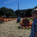 Pumpkin Patch 2015 - 100_0383.JPG