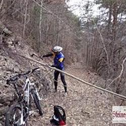 Trail_aushacken_2.jpg