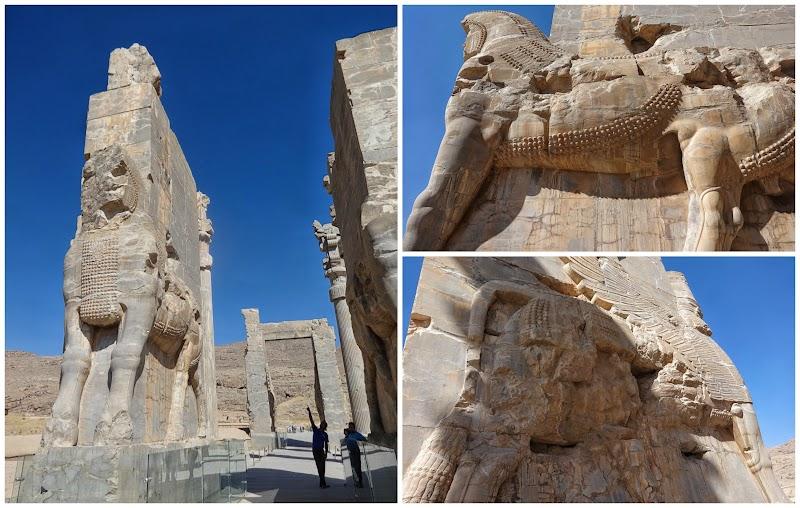 Persepolis brama.jpg