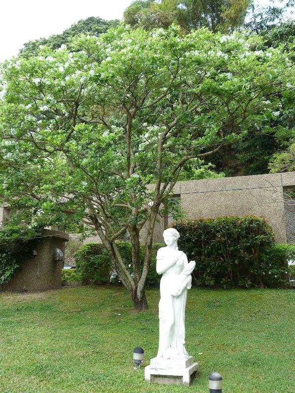 TAIWAN Taipei Dahu Park et dans le quartier de SHIH CHIEN University - P1260252.JPG