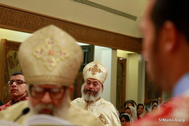 Feast of the Nativity 2012 - _MG_1600.JPG