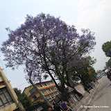 Katmandou_Nagarkot