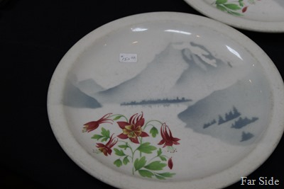 Great Northern Mountain and Flowers Pattern 1940-1969