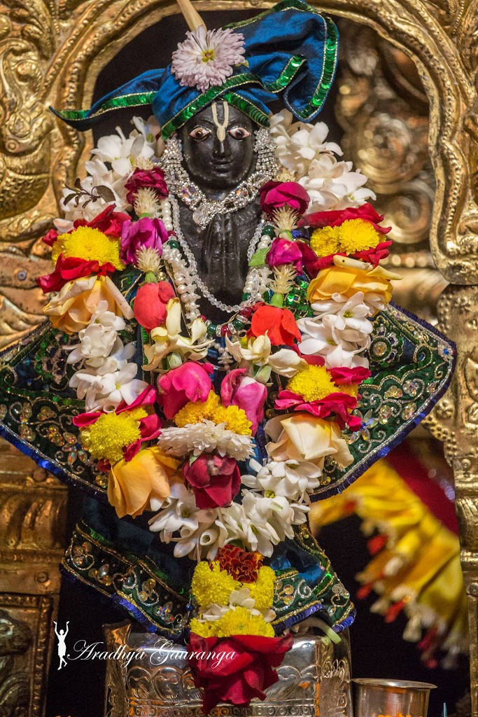 ISKCON Mayapur Deity Darshan 11 Jan 2017 (38)