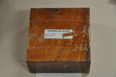 DSC_6056.JPG