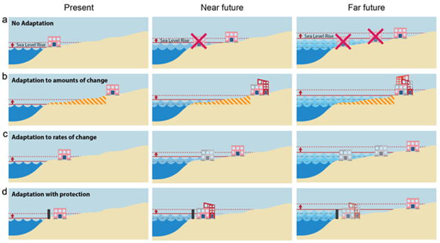 Choice of adaptation strategies for sea level rise. Investments close to the sea are more productive but at greater risk from sea-level rise. Rows represent different adaptation strategies and columns left-to-right indicate the progression of time from present to far future. (a) Strategies that ignore sea-level rise invest close to the shoreline and valuable assets are lost to the rising seas. (b) Strategies that consider adaptation only to some future amount of sea-level change produce a restricted zone that can eliminate valuable investment opportunities. (c) Strategies that consider adaptation to ongoing rates of sea-level change allow for an economically optimal outcome. (d) Strategies involving dikes or other types of coastal protection provide a temporary hold to sea-level rise but are eventually forced to adapt to ongoing rates of sea-level rise. Graphic: Shayegh, et al., 2016 / Environmental Research Letters