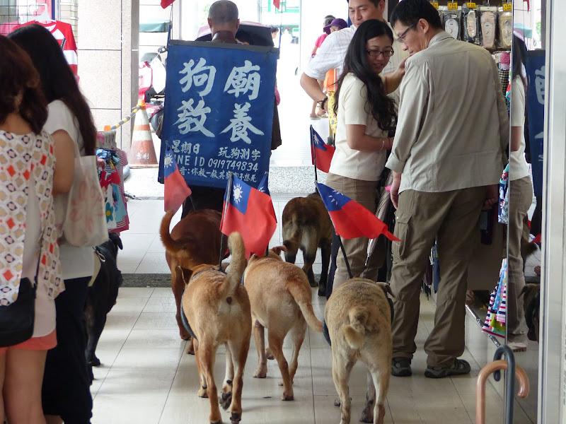 Taipei. Modélisme davions et Street art - P1250720.JPG