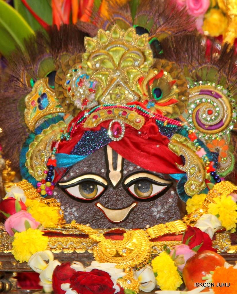 ISKCON Juhu Sringar Deity Darshan on 10th July 2016 (11)