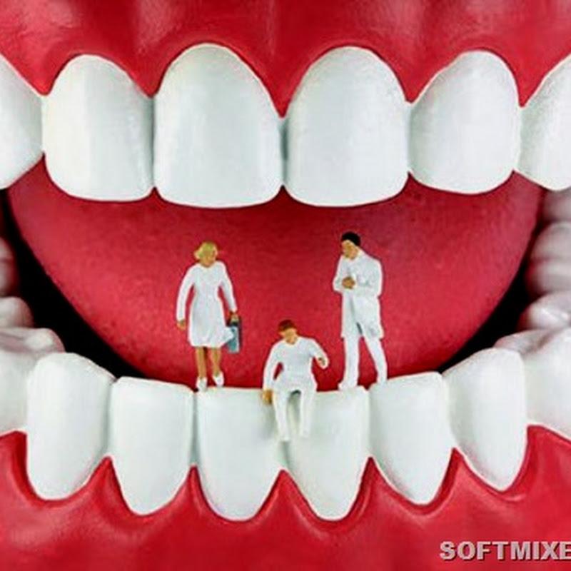 Десять необычных фактов о зубах