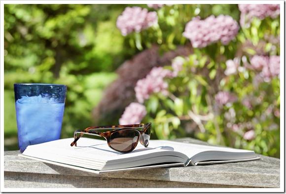Lectura semana don dividendo 23-2016