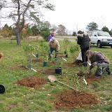 Hammo Planting - Shannon Schiesser - IMG_4911.JPG