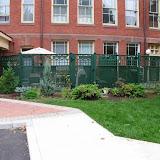 Classic Cedar Privacy fence