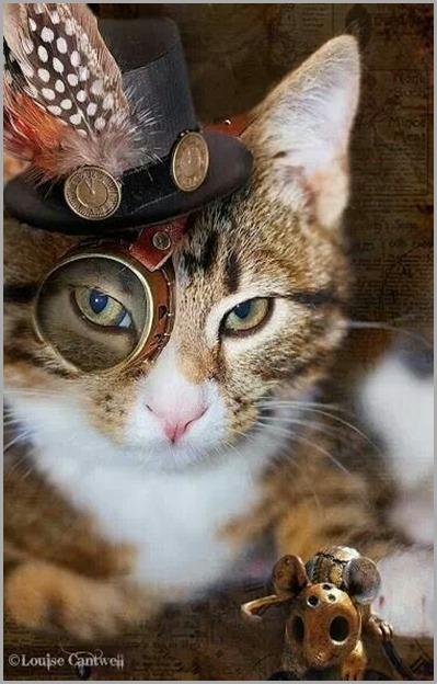 steampunk-cat-3 - copia