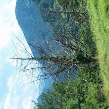 Zlet, Tolmin 2002 1/2 - P1002085.jpg