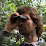 Ray Drossaert's profile photo