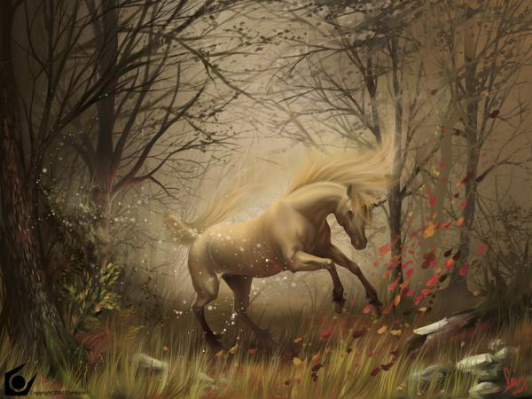 Dance Of The Horse, Spirit Companion 4