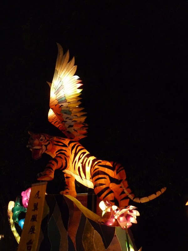 Taiwan .Taipei Lantern Festival - P1150868.JPG