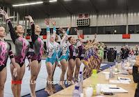 Han Balk Fantastic Gymnastics 2015-5159.jpg