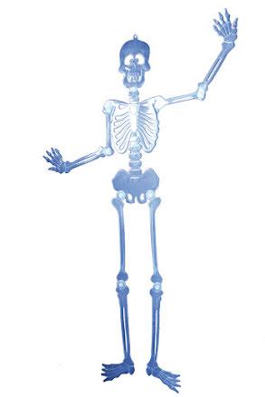 Skelett självlysande, 90 cm