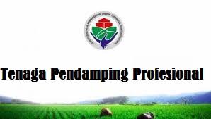 Rekutmen TPP Tenaga Pendamping Profesional Desa Tahun 2021 2022