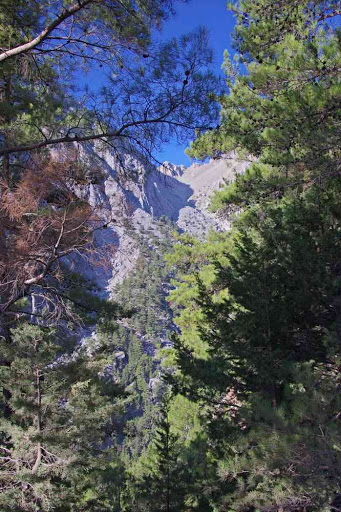 Descente dans les gorges de Samaria (Φαράγγι Σαμαριάς).