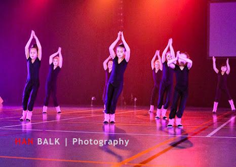 Han Balk Voorster Dansdag 2016-3384-2.jpg