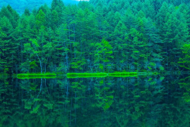 Mishaka Pond photo4