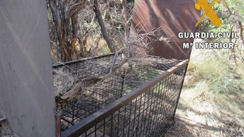 Jaula trampa preparada para la captura de grandes especímenes en parque Sierra Nevada