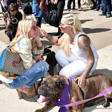 OIC - ENTSIMAGES.COM - Meg Matthews and Jodie Marsh at the Puppy Farming Protest - demonstration and photocall 24th May 2016, rally and photocall in London's Parliament Square to raise awareness of the UK's cruel puppy farming trade, in association with PupAid, Boycott Dogs4Us and C.A.R.I.A.D.  Photo Mobis Photos/OIC 0203 174 1069
