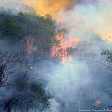 Incendie de forêt près de Pitangui (MG, Brésil), 12 septembre 2010. Photo : Nicodemos Rosa