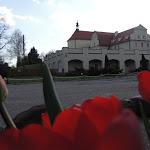 2015.04.21.,Klasztor w Ostrzeszowie, fot.s.A (95).JPG