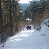 Excursió a la Neu - Molina 2013 - P1050565.JPG
