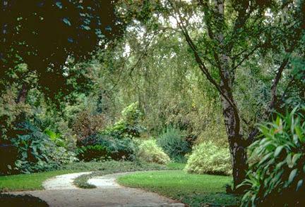 external image Garden%252011-13%2520Briar%2520Ave%252C%2520Medindie%2520rt19466-31074.jpg
