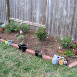 Gardening 2010 - 101_0891.JPG