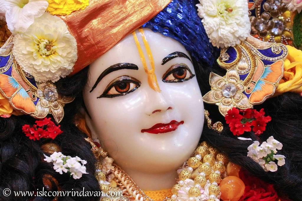 ISKCON Vrindavan Sringar Deity Darshan 03 Feb 2016 (9)