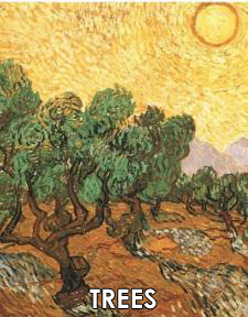 Vincent van Gogh Paintings of Trees and Undergrowth