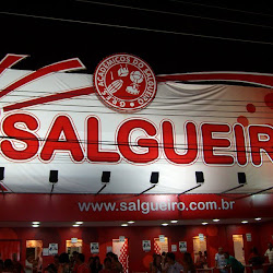 GRES - ACADÊMICOS DO SALGUEIRO's profile photo