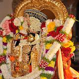 Brahmotsavam Day8 KalyanaUtsavam