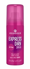 ess_ExpressDrySpray