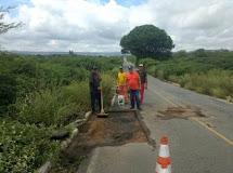 Equipes do DER realizam operação tapa buraco nas rodovias do Vale do Sabugi