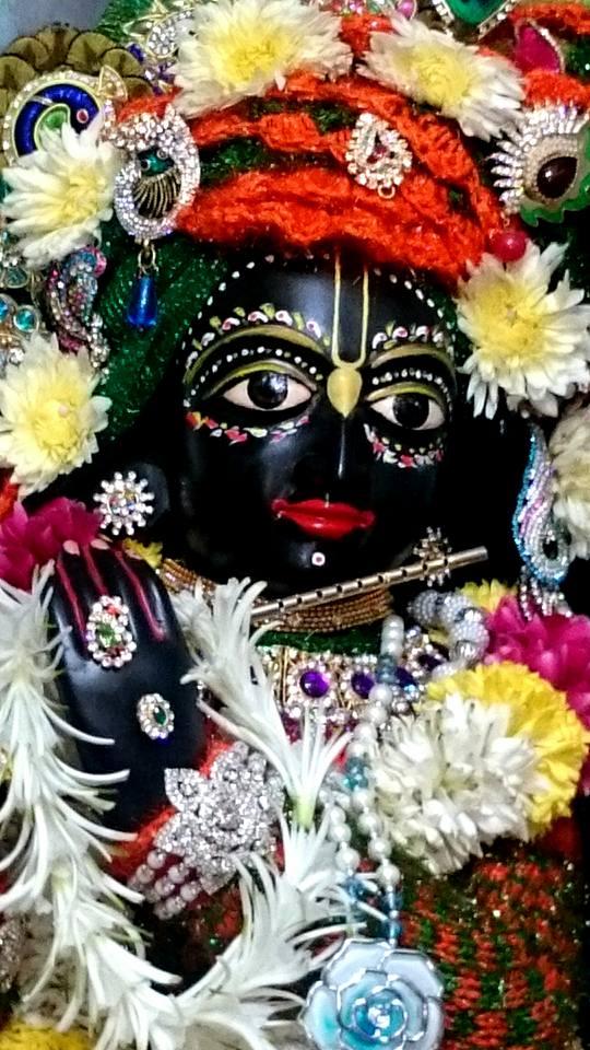 ISKCON Bhusawal Deity Darshan 23 Jan 2016 (1)