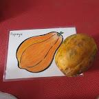 Introduction to Papaya (Playgroup) 20-8-2015