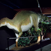 Houston Museum of Natural Science, Sugar Land - 114_6674.JPG