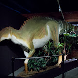 Houston Museum of Natural Science, Sugar Land - 114_6674.JPG