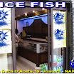 ICE FISH PIANURA.JPG